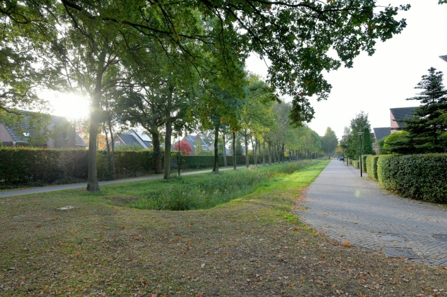 deventer-willem-landrestraat-4226710-foto-37.jpg