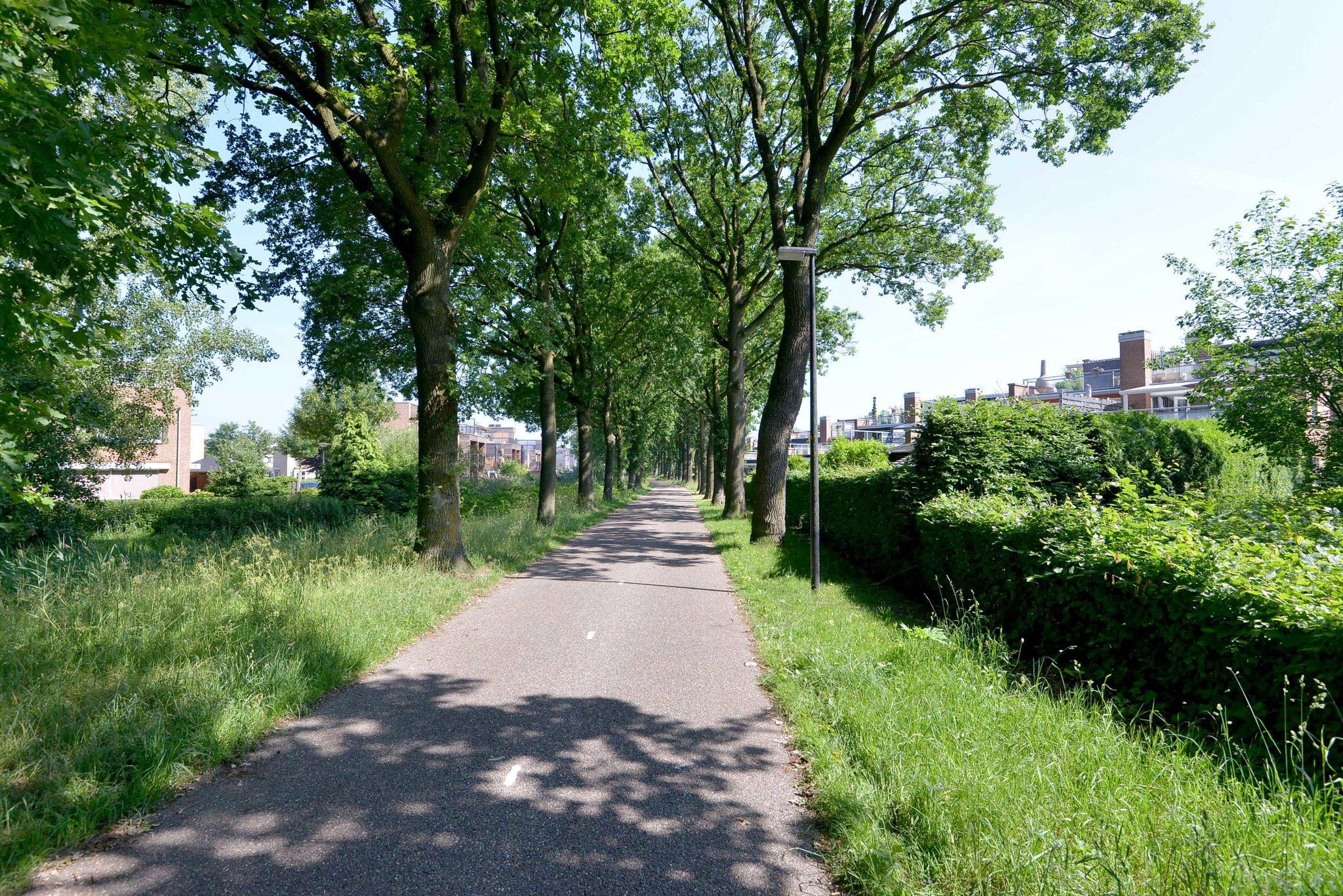 deventer-johan-wensinkstraat-4207412-foto-25.jpg