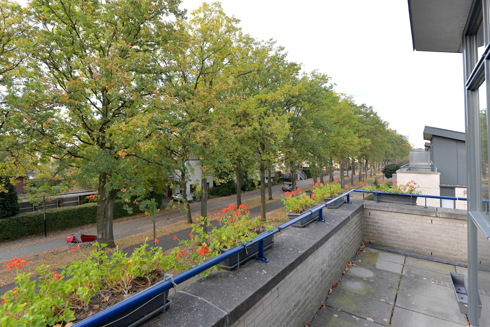 deventer-willem-landrestraat-4226710-foto-30.jpg