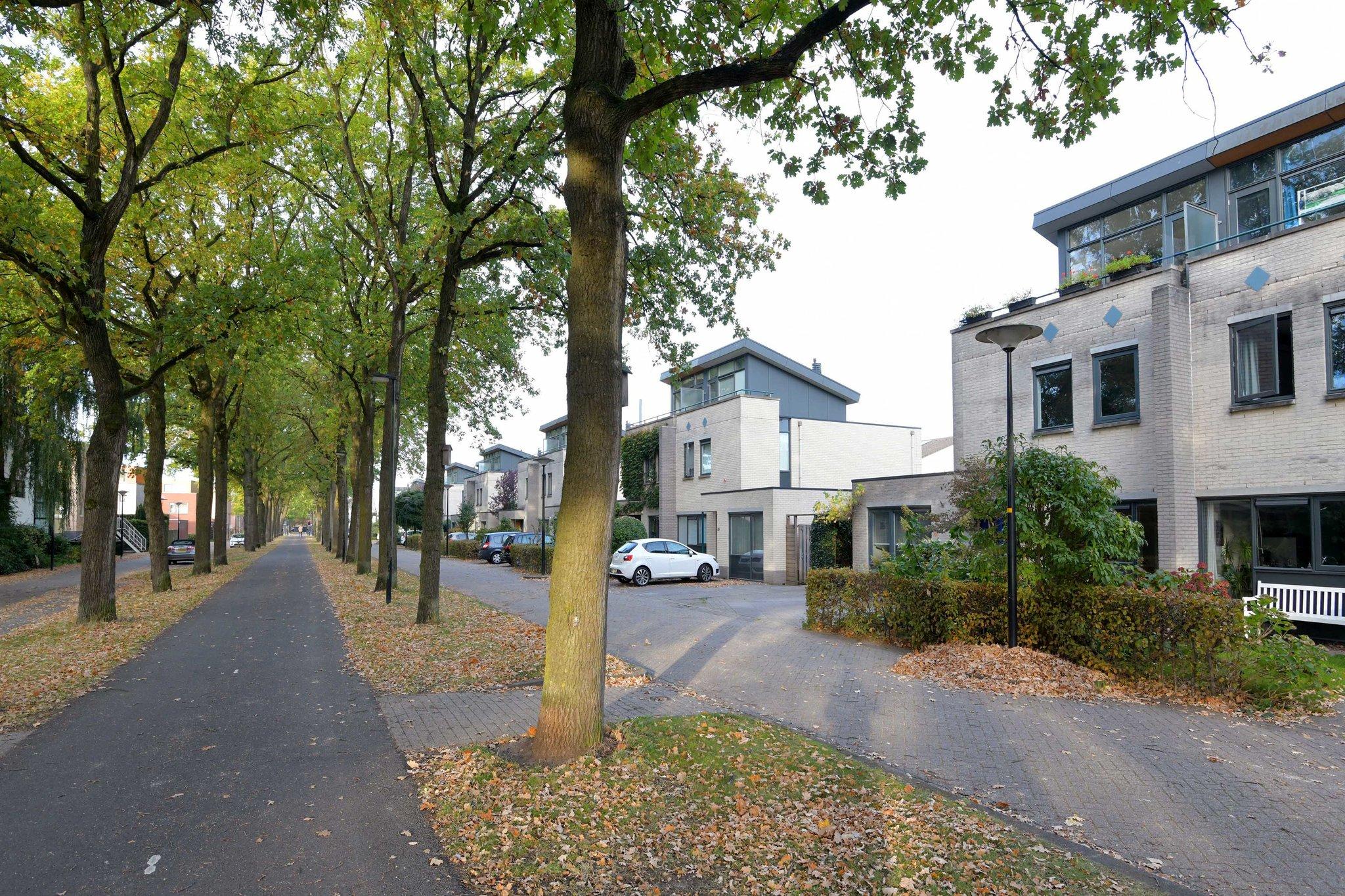 deventer-willem-landrestraat-4226710-foto-38.jpg